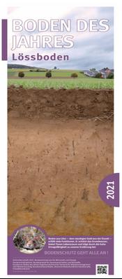 Boden des Jahres 2021